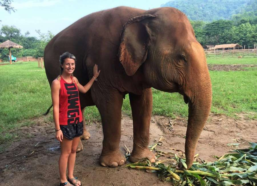 Sharpsburg native travels to Thailand to work with elephants