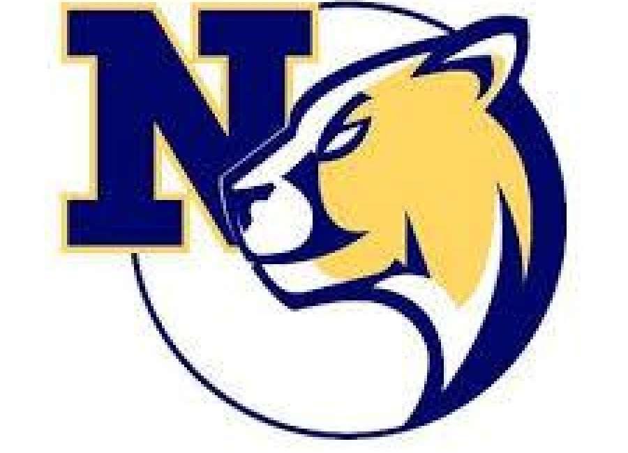 Newan sweeps Northgate