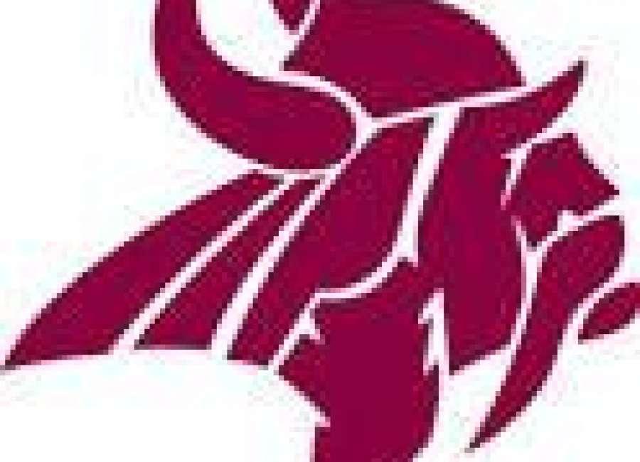 Northgate softball earns split