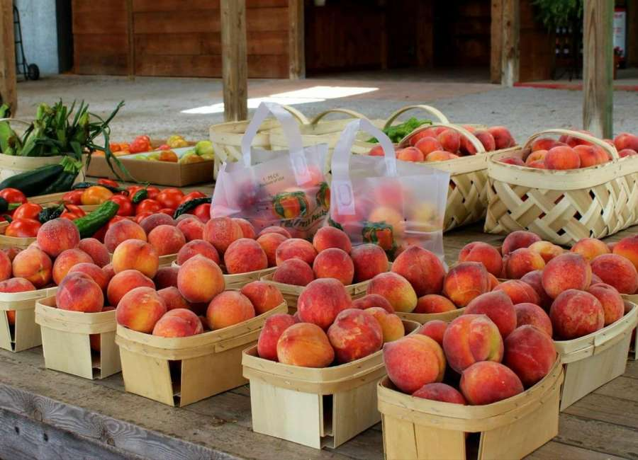 Peach recipe contest to be held at Lake Meriwether festival