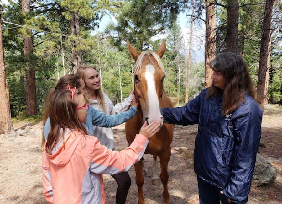 Cowetans place in 4-H state equine competition