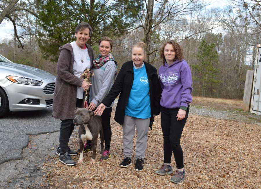 From Coweta to Canada: rescue dogs heading to new homes