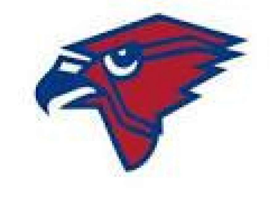 Heritage Lady Hawks open region tournament with victory