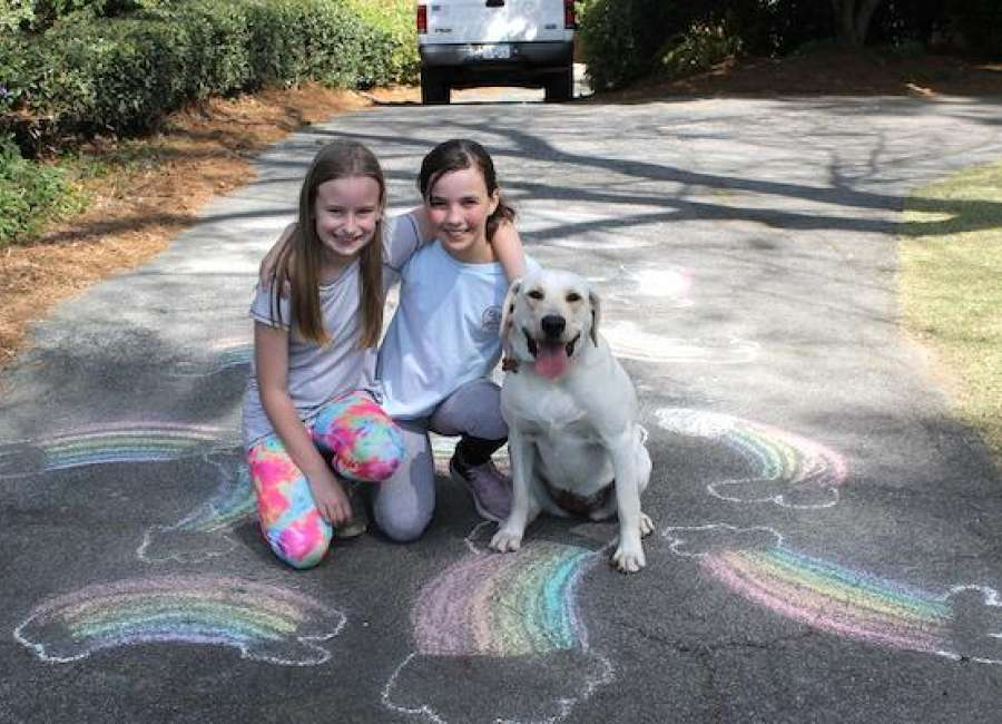 Neighbors spread cheer with 'rainbow hunt'