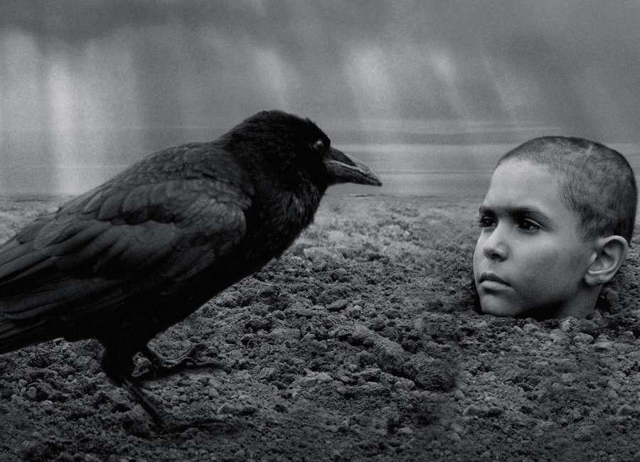 The Painted Bird: Bleak Czech film isn't for everyone