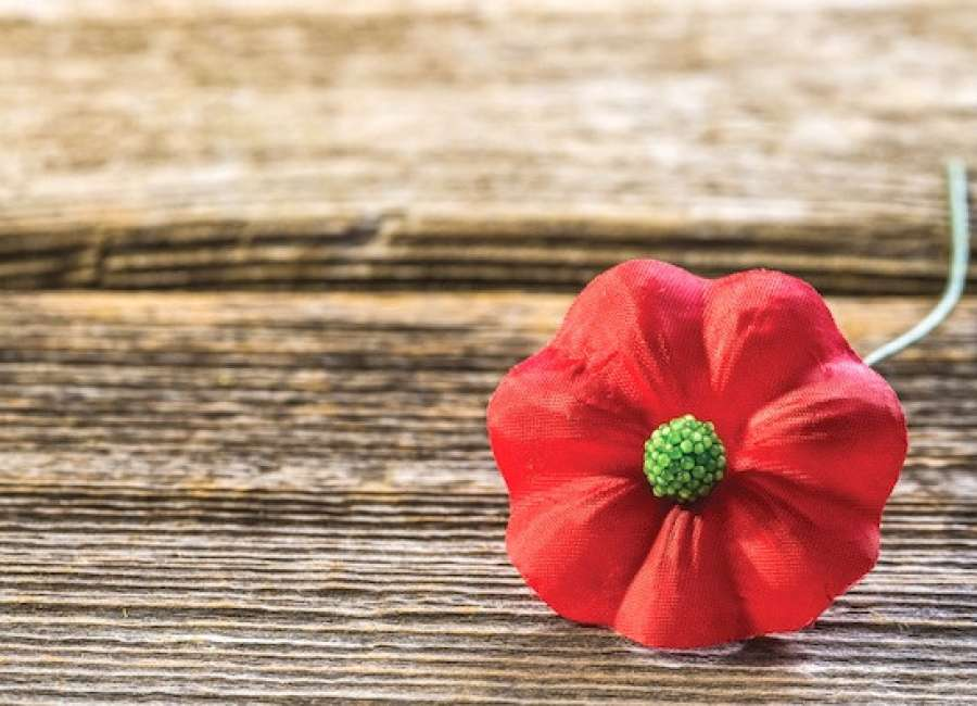 VFW cancels Buddy Poppy drive