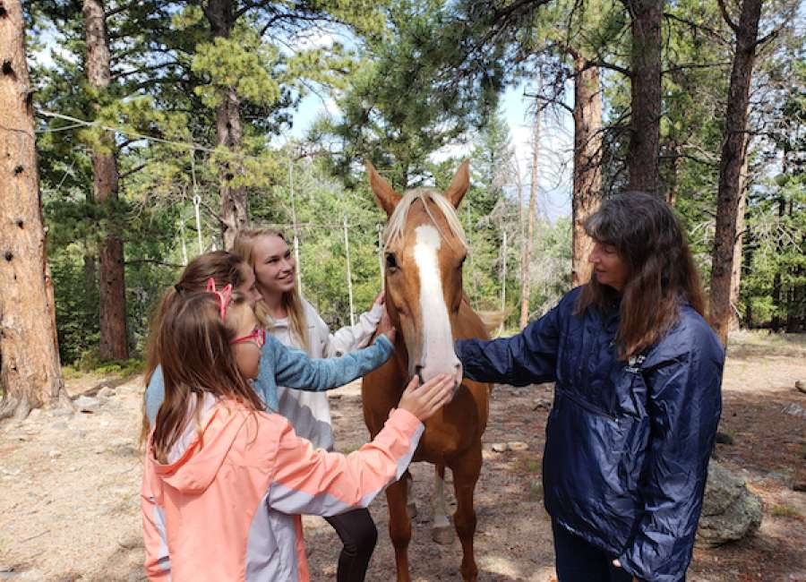 4-H Horse Quiz Bowl Teams will advance to state competition