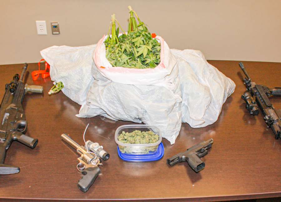 CCSO: Pest control employee discovers marijuana plants