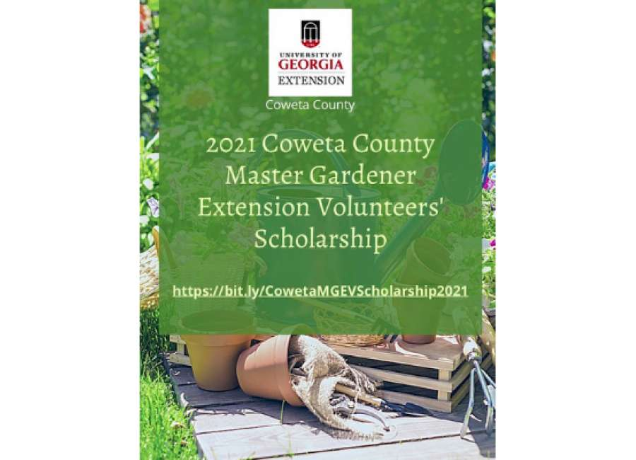 Coweta County MGEV Scholarship applications open