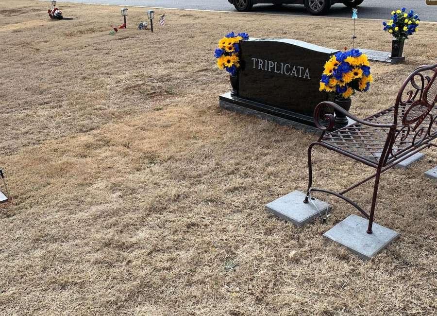 New bench replaces one taken from grave