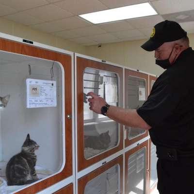 Shelter lowering rates to encourage pet adoptions
